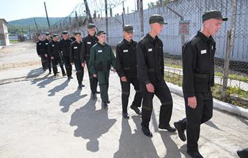 МВД заявило об амнистии по статье 328