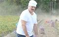 Лукашенко: На памятник за войну в Беларуси нужно поставить мешок картошки