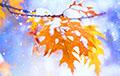 То ли осень, то ли зима: прогноз погоды на выходные