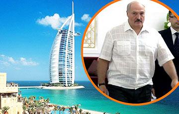 Чым займаецца Лукашэнка ў Абу-Дабі?