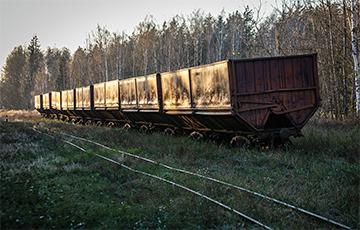 Возле Минска обнаружили загадочную железную дорогу