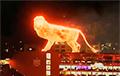 Видеохит: В Аргентине на открытии стадиона выступил огромный огненный лев