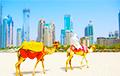 Не только нефть и газ: в чем настоящая причина богатства ОАЭ
