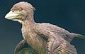 В Японии нашли одну из первых птиц в мире