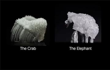 Видеофакт: Капли соли убегают от физиков на маленьких ножках