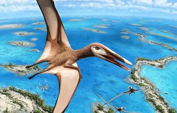 В Чили нашли останки одного из древнейших птерозавров