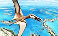 Исследователи идентифицировали новый вид летающего динозавра