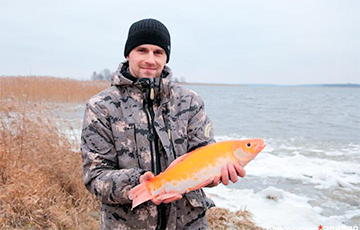 В Браславском районе поймали редкую «золотую рыбку»