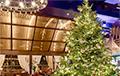 Стало известно, как выглядит самая дорогая в мире рождественская елка