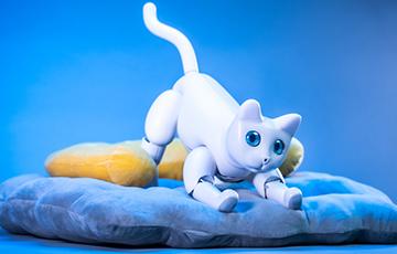 Ученые изобрели робота-кошку с шестью эмоциями