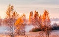 За три дня на белорусских метеостанциях побито 37 температурных рекордов