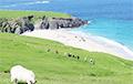 Ирландский остров приглашает двоих людей пожить бесплатно и поработать управляющими
