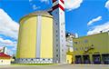 Сахарным комбинатом в Жабинке будет руководить трактороремонтник