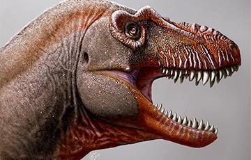 Палеонтологи открыли новый вид тираннозавров