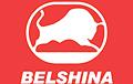 Заводы «Белшина» останавливают работу