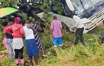 У Зімбабвэ скандал праз «беларускія аўтобусы і зямлю»