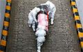«COVID-19 у Нью-Ёрку забівае аднаго чалавека кожныя 17 хвілін»