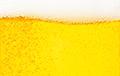 Археологи раскрыли секрет имбирного пива 19 века