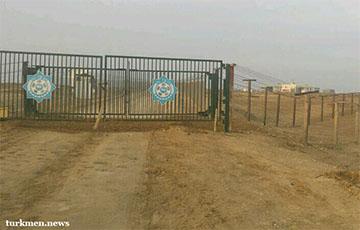 На границе Казахстана и Туркменистана скончался водитель грузовика из Беларуси