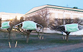 Фотафакт: На дрэвы ў цэнтры Менска надзелі велізарныя медыцынскія маскі