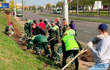 На День города в Минске вместо массовых гуляний будет субботник