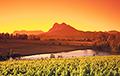 Ученые нашли в Южной Африке затерянный древний мир