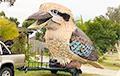 Відэахіт: Аўстраліец забаўляе людзей на карантыне 750-кілаграмовай рагатлівай птушкай