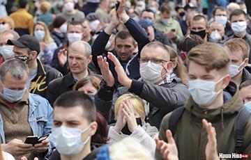 «Стоп таракан!»: в 37 городах Беларуси собирали подписи за альтернативных кандидатов