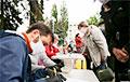 «Стоп таракан!», 12.00: легальные пикеты за Тихановских по всей стране