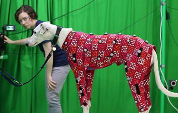 Ученые научились делать цифровых двойников собак