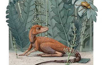 На Мадагаскаре нашли динозавра размером с кофейную чашку