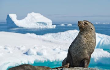 Ученые обнаружили гигантскую «печку» на Южном полюсе Земли