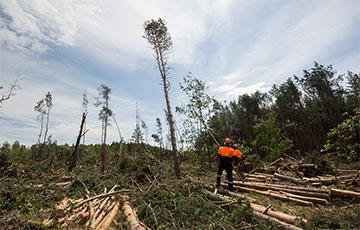 «Думали, конец света»: как стихия обрушилась на Малоритский район
