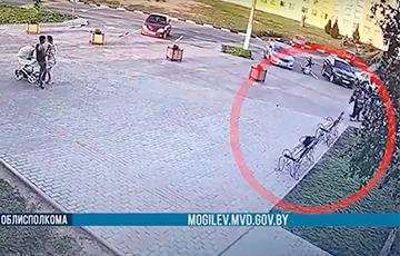В Костюковичах парень украл деньги, а их потом стянула ворона