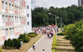 Фотофакт: Огромная очередь выстроилась возле школы № 49 в Минске