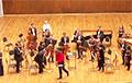 Музыканты Госфилармонии начали махать бело-красно-белыми флагами прямо на сцене