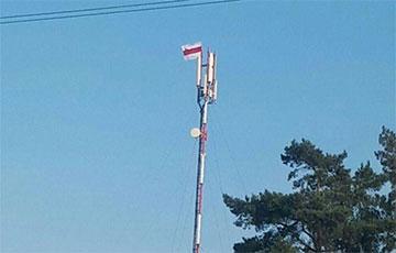 Поселок Сосны под Минском поднял национальный флаг