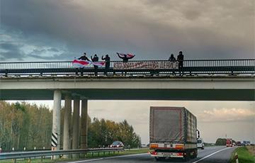 Жодинские «партизаны» поздравили белорусов с добрым утром