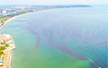 Море в украинской Одессе стало красным