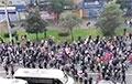 Десятки тысяч участников Партизанского марша призвали к честным выборам