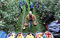 Белорусские фермеры грозятся урожай оставить гнить в полях