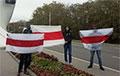 Брестские партизаны устраивают «летучие пикеты»