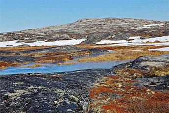 Ученые обнаружили под Гренландией гигантскую «темную» реку