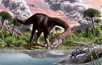 Ученые выяснили, что вызвало огромные размеры тела у динозавров