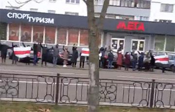 Жители Бреста встали в цепь солидарности