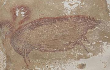 Археологи нашли древнейший в мире наскальный рисунок
