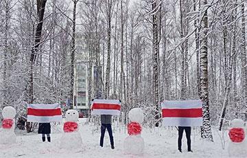 Партизаны Зеленого Луга вышли на протест