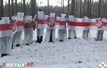 Партизаны Вилейки провели акцию памяти Героев Беларуси
