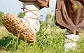 «Яшчэ крыху - і лапці давядзецца абуваць»