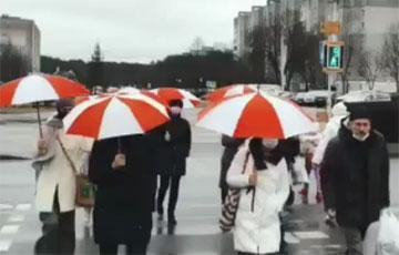 Минчанки вышли на акцию с бело-красно-белыми зонтами